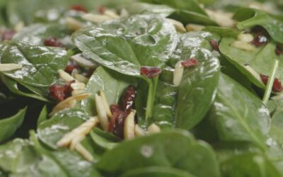 Cranberry Spinach Salad with Fig Balsamic Vinaigrette